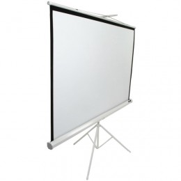 Elite Screens T85NWS1