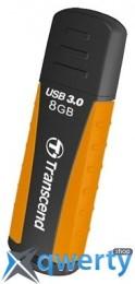 Transcend JetFlash 810 8Gb (TS8GJF810)