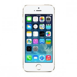 Apple iPhone 5S 16GB Gold (never lock)