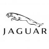 JaguarXR81775