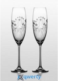 Grandioso набор бокалов для шампанского (Helena)