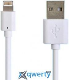 Henca iPhone 6/5S/5C Sync&Charge (LD01U-i16P)