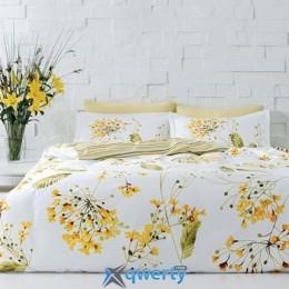TAC Blossom yellow dv