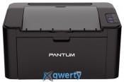 Pantum P2507