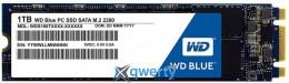 WESTERN DIGITAL BLUE SSD 1TB M.2 SATAIII (WDS100T1B0B)
