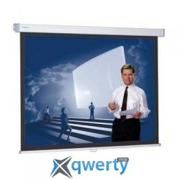 Projecta ProScreen MWS (10201062) купить в Одессе