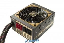Enermax Revolution87+ 1000 W (ERV1000EWT-G)