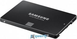 Samsung 750 EVO 120GB (MZ-750120BW)