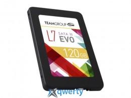 SSD 120GB Team L7 EVO TLC (T253L7120GTC101)