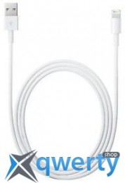 Apple Lightning to USB Cable (1 m) (MD818) (no box)