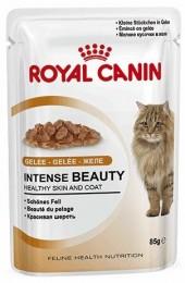 Royal Canin Intense Beauty в желе