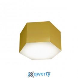 LED светильник потолочный Ceiling Lamp Cleo 15W M GL (I428315M-GL)