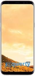 Samsung Galaxy S8+ (SM-G955F) (Gold (SM-G955FZDDSEK))