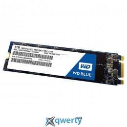 Western Digital Blue SSD 1TB M.2 SATAIII TLC (WDS100T2B0B)