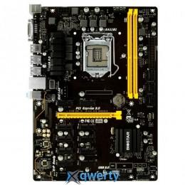 BIOSTAR TB250-BTC Pro Ver. 6.x (s1151, Intel B250, PCI-Ex16) купить в Одессе