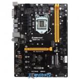 BIOSTAR TB250-BTC Ver. 6.x (s1151, Intel B250, PCI-Ex16)