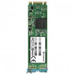 TRANSCEND MTS800 64GB M.2 SATA MLC (TS64GMTS800S)