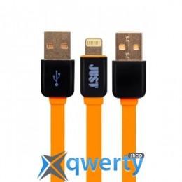JUST Rainbow Lightning USB Cable Orange (LGTNG-RNBW-RNG)