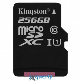 Kingston 256GB microSDXC C10 UHS-I R80MB/s (SDCS/256GBSP)