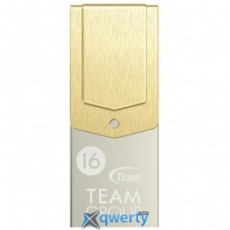 Team 16GB M161 Gold USB 3.1 OTG Type-C (TM161316GD01)