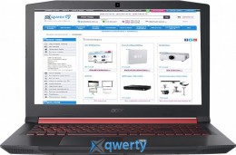 Acer Nitro 5 AN515-52 (NH.Q3LEU.037) Shale Black