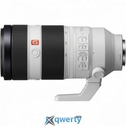 Sony 100-400mm, f/4.5-5.6 GM OSS для камер NEX FF (SEL100400GM.SYX)