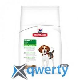HiILS SP Puppy HDev L R-Цуценя (медіум). Здоровий розвиток/ягня та рис- 1кг