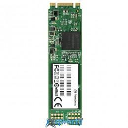 TRANSCEND MTS800 256GB M.2 SATA (TS256GMTS800S)