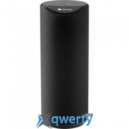 CANYON Portable Bluetooth Speaker Black (CNS-CBTSP5B)
