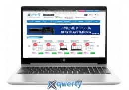 HP ProBook 450 G6 (4TC92AV_V16) Pike Silver