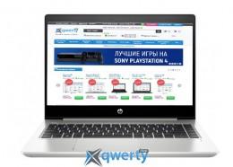 HP ProBook 445R G6 (5UN07AV_V5) Pike Silver