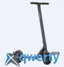 Segway Ninebot KickScooter E25E Grey (AA.00.0000.88)