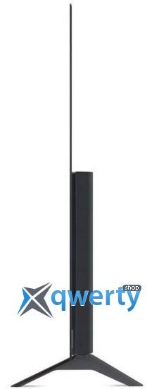 LG OLED 55A13